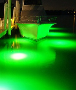 our green underwater dock lights will light up your night